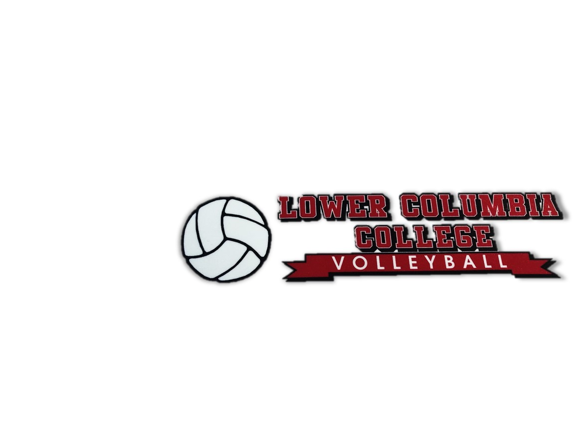 Image For DECAL VOLLEYBALL